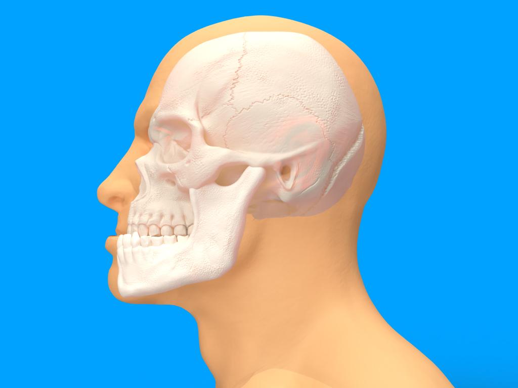 Chirurgia Maxillo-Facciale Ortognatica - Protrusione mandibolare - CENTRO ORTODONZIA BAVARESCO